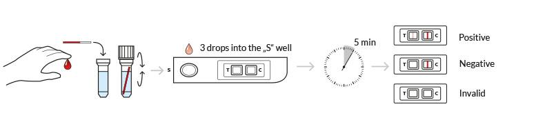 testprocedure helicobacter pylori